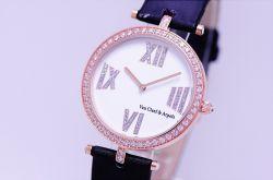 Watch Pie Ladies Watch Wholesale Automatic